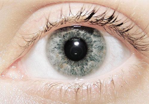 13-Gray-eyes.jpg?type=w2