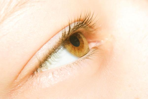 Yellow_eyes.jpeg?type=w2