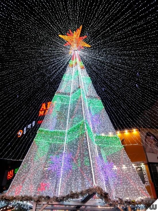 [부산 광복동] 부산크리스마스트리문화축제