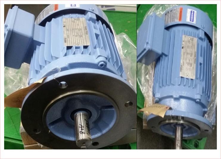 PREMIUM Efficiency AC3 Phase Motor