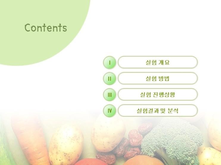 재배실험 (2016년 4월 12일 상추재배 실험) - 유기농자재 - 점적관수 - 실패