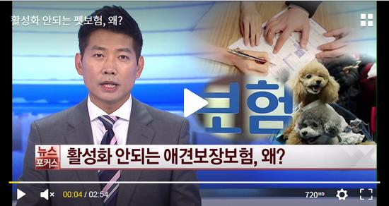 활성화 안되는 펫보험, 왜? - WQW 한국경제TV