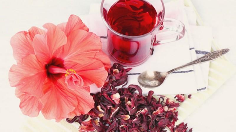 #hibiscus_fleur