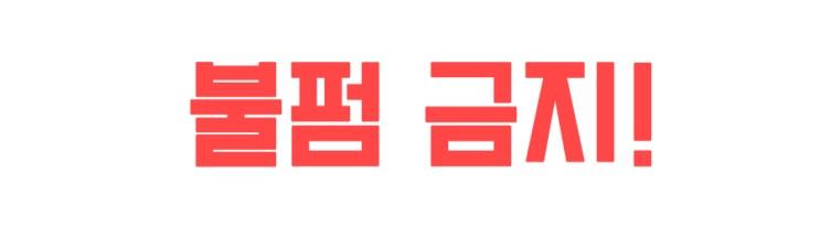 [책 리뷰] 강지영 소설 '개들이 식사할 시간' 줄거리/ 느낀점/ 후기