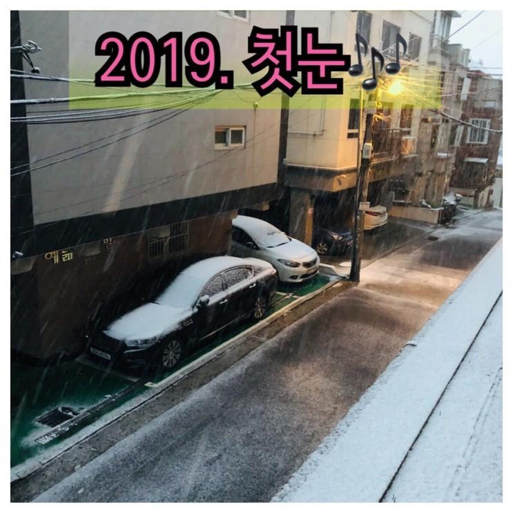 [서울첫눈] 오늘 서울 날씨 / 대설주의보 발효 / 서울 11월 날씨 / 오늘이 서울 첫눈인가??
