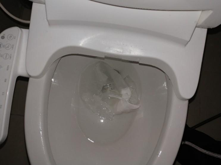 원인을 알 수 없었던 화장실 막힌 변기, 잘 뚫어드렸습니다! 인천 구월동