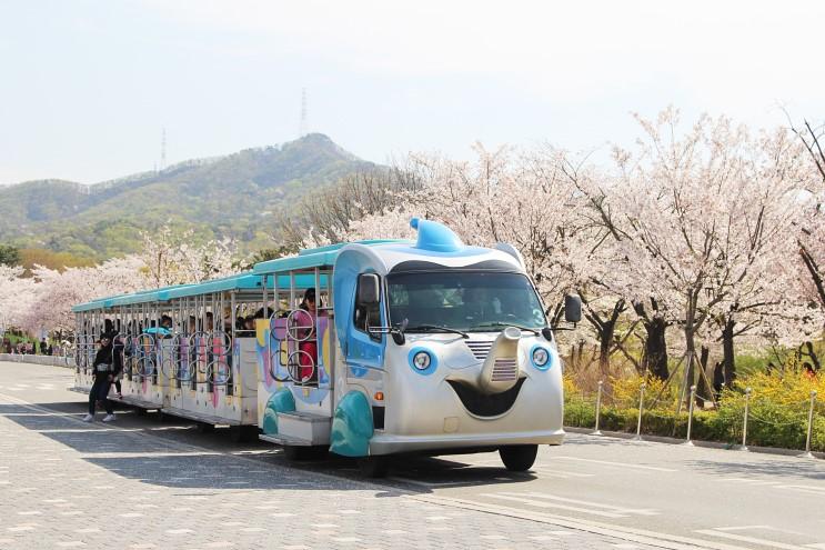 서울대공원 봄꽃놀이