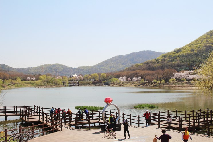 인천대공원 봄꽃놀이