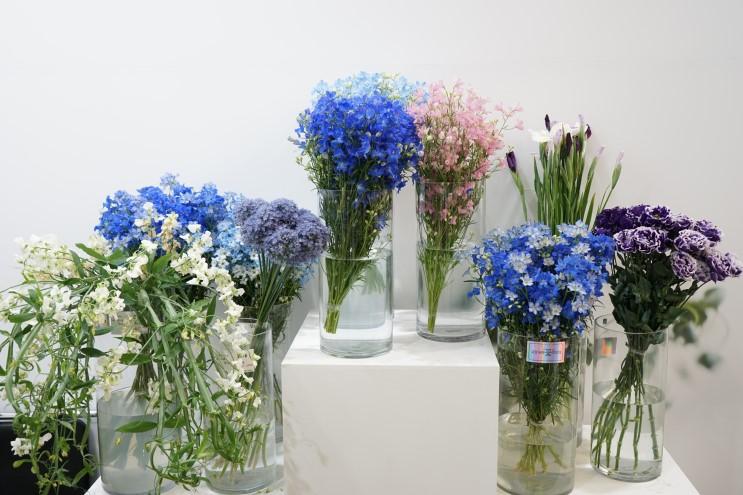 고양국제꽃박람회(실내전시장)