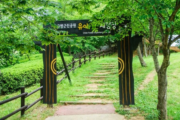솔향기 가득한 주민들의 휴식처 진영 금병공원