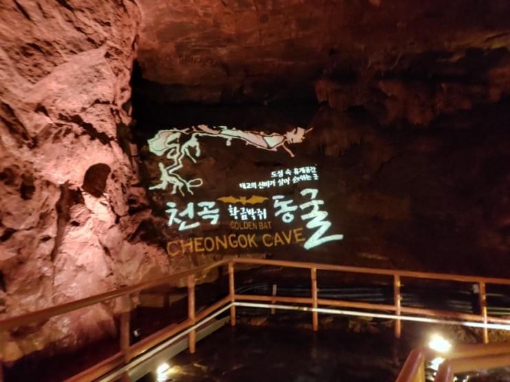 천곡동굴 밤낚시 막국수.. 강원도여행 마무리
