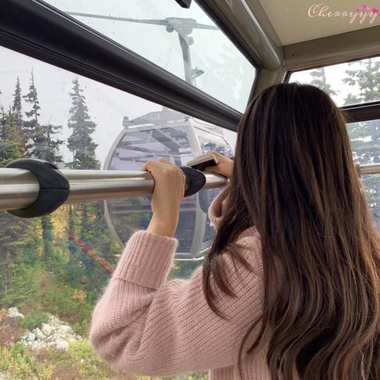 밴쿠버이야기:whistler여행/블랙콤곤돌라/peak2peak/휘슬러빌리지/흰등마모트