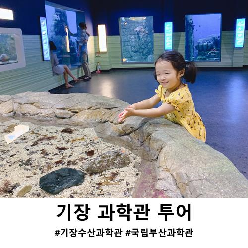 부산 아이들과 가볼만한곳 기장 수산과학관 & 국립부산과학관