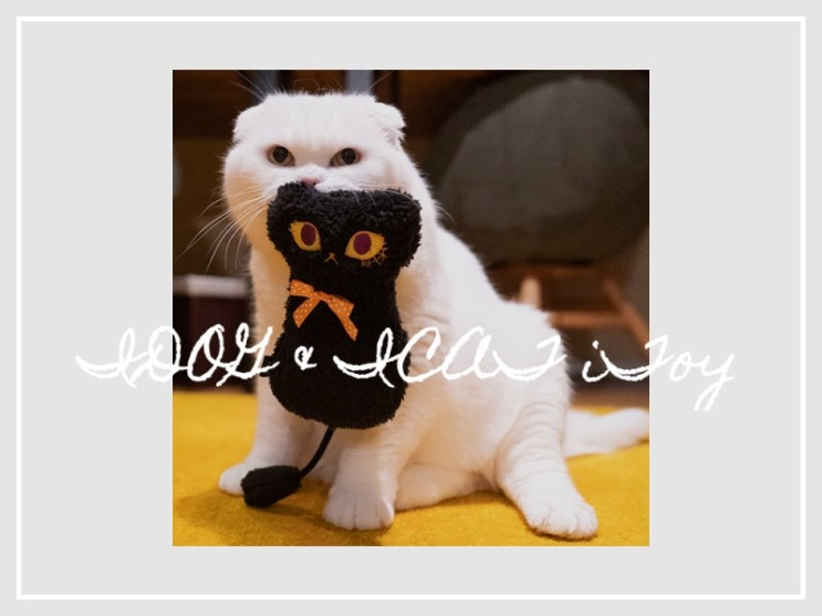 iCAT iTOY 고양이장난감 바스락 캣닢인형 할로윈 #캣토이