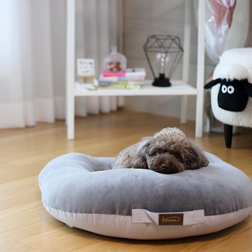 강아지 마약방석 사계절 내내 꿀잠 자는 컴플렛 듀얼마약방석