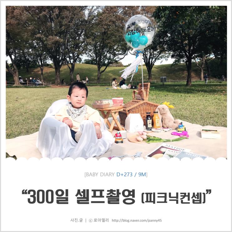 [생후 273일] <올림픽공원 가을피크닉 + 셀프 300일 촬영> (with 아이배냇, 어썸피크닉)