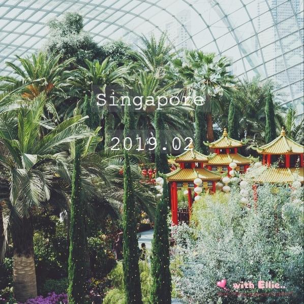 싱가포르 자유여행 :: 가볼만한 곳 가든스바이더베이 플라워 돔