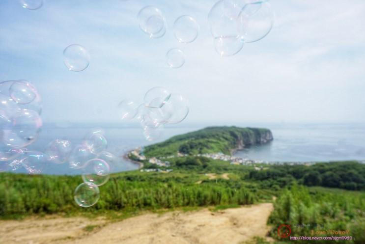 블라디보스톡여행 루스키섬 뱌틀리나곶 힐링하기