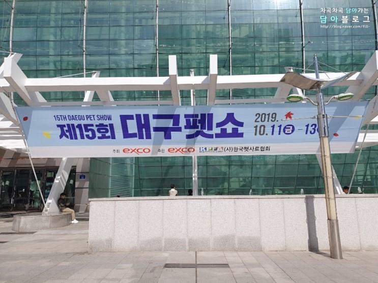 2019 엑스코 대구 펫쇼 관람 후기