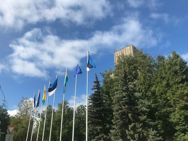 [겁나신나부부 유럽여행]  상트페테르부르크를 떠나 에스토니아 탈린 도착 / ECOLINE 버스를 타고 러시아를 지나 유럽으로!