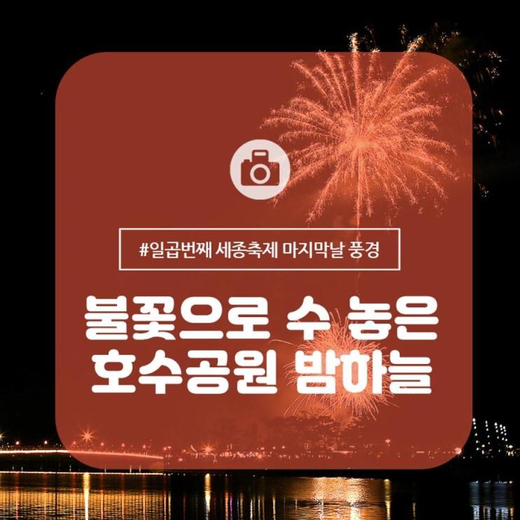[세종축제] 호수공원의 밤하늘에 불꽃으로 수 놓다