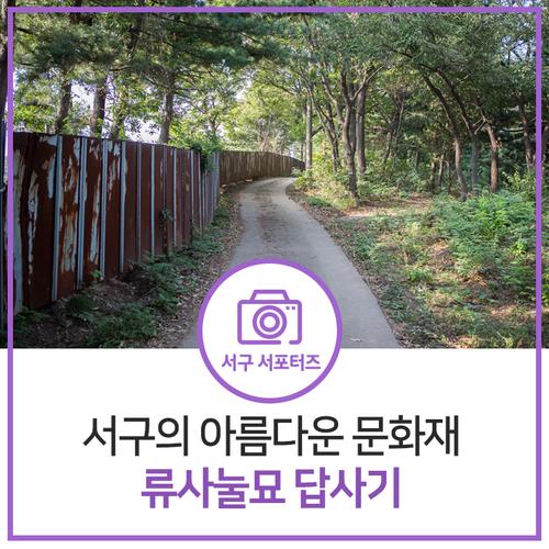 재미있는 인천의 역사기행! 서구의 아름다운 문화재 류사눌묘에 가다