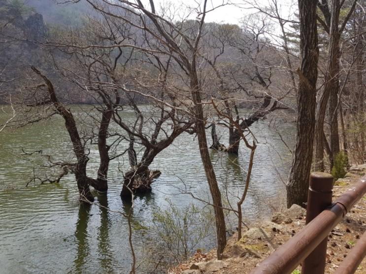 주산지 주왕산국립공원까지