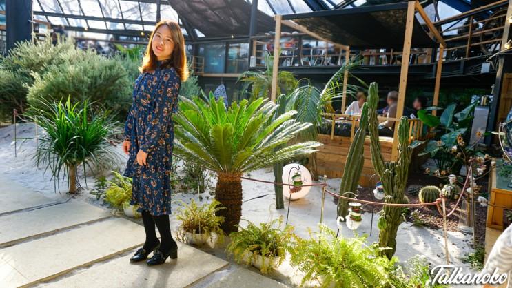 남양주 식물원 카페 비루개, 한 번만 가보기엔 아쉬운 이색 데이트 코스 추천
