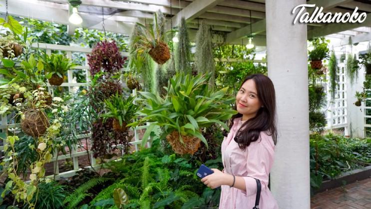여미지 식물원, 제주도 비올때 가볼만한 곳 추천!