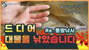 드디어 통발낚시로 대물을 낚았습니다!!/Korean River Prawn(fish trap)