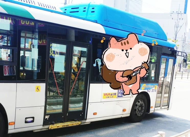 청주시내버스 시간표, 노선 및 요금 총정리(차차차 청주 교통행정포털, 버스정보시스템)