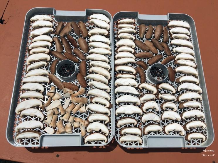 표고버섯 씻기, 손질, 말리기