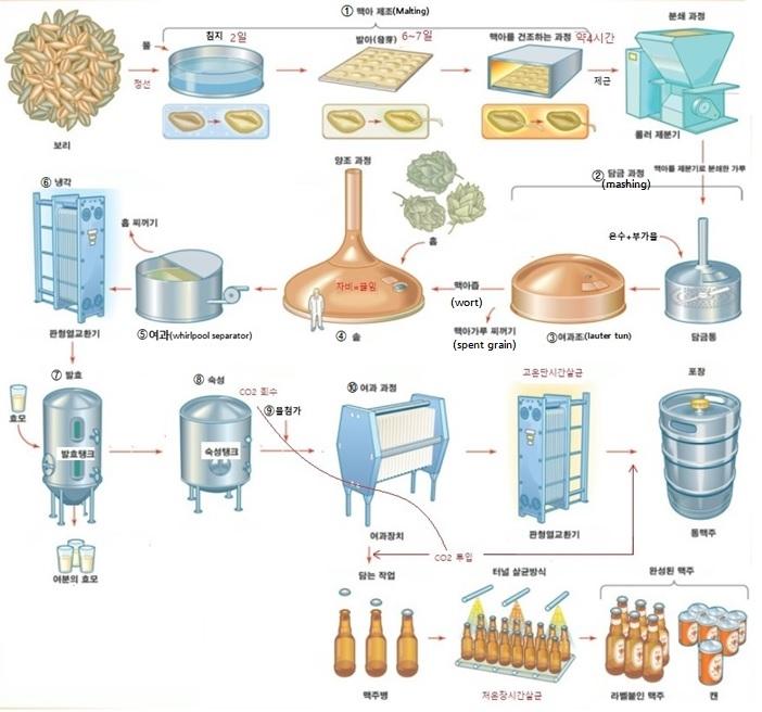 [맥주제조공정] 1. 수제맥주 vs 공장맥주 제조 공정 비교