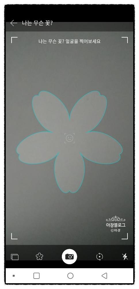 어플없이 꽃이름알기