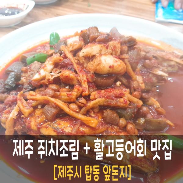 제주 탑동맛집 쥐치조림 고등어회 도민 맛집 [앞돈지]