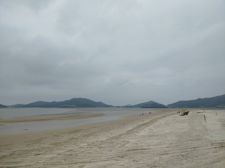 신안군 슬로시티 증도 가볼만한 곳~ 드넓은 모래해변 짱뚱어해수욕장, 사진찍기 좋은 짱뚱어 다리!   알쓸리뷰X신안여행