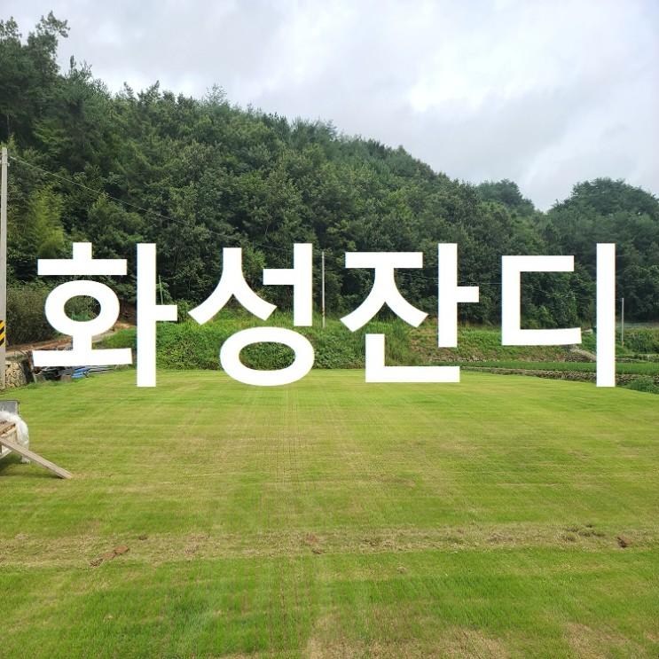 개혁의 상징, 경기도 화성에 잔디 배송