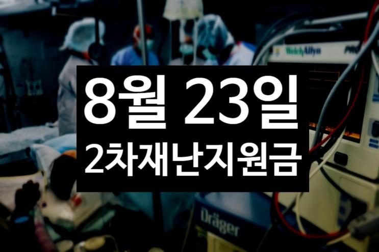 서울 2차 재난지원금 얼마 지급금액 결정 8월 23일 검토 제주도는 이미 신청중