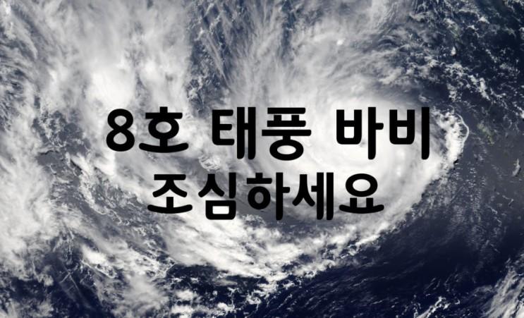 8호 태풍 바비 조심하세요 [태풍 대처 요령/26일~27일 한반도 관통/태풍경로]