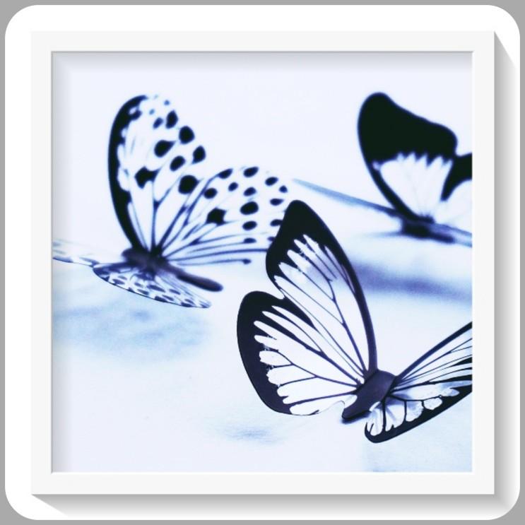 나비꿈 풀이입니다.