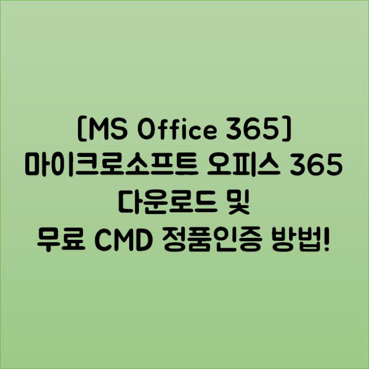 [MS Office 365] 마이크로소프트 오피스 365 다운로드 및 무료 CMD 정품인증 방법!