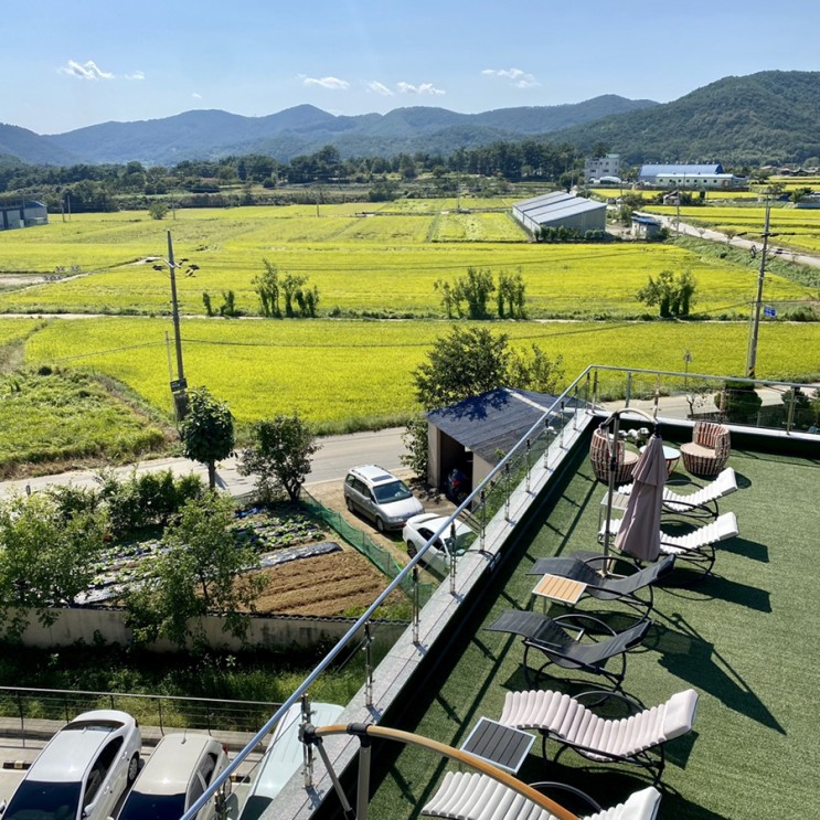 밀양 위양지 위양못 밀양맛집 카페추천 위양448