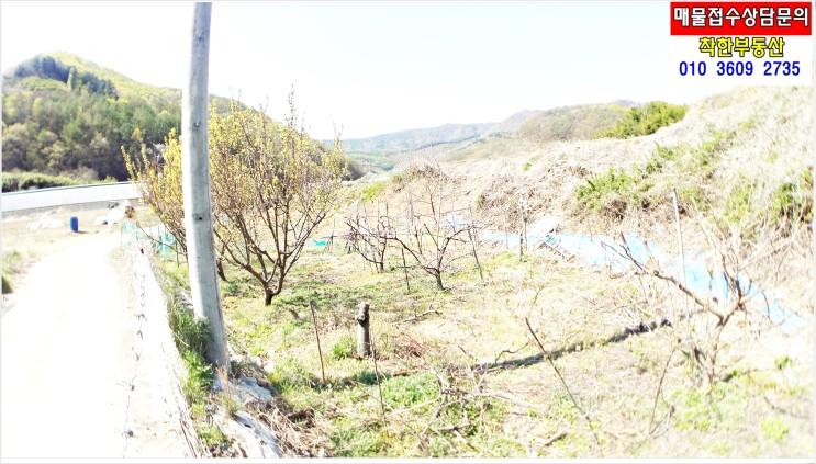 포항 저렴한 주말농장 텃밭 토지 찾으세요? 평수적당 착한금액 기계면 가안리 촌땅 매매 있어요!