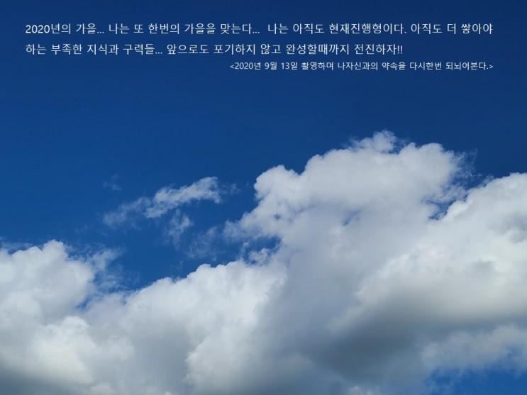 채정안, 키이스트와 전속계약…주지훈·고아성과 한솥밥 [공식]