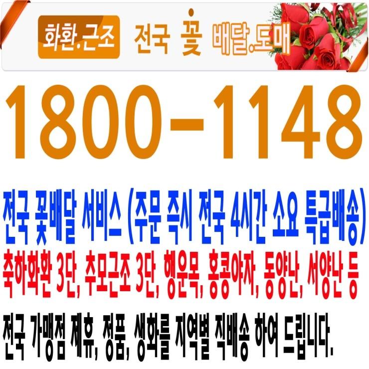 화환,근조 전국 꽃배달 전국 특급배송 전문점 1800-1148