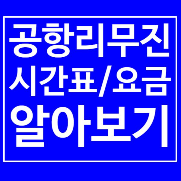인천공항 리무진 시간표/노선/운행요금 확인하기!