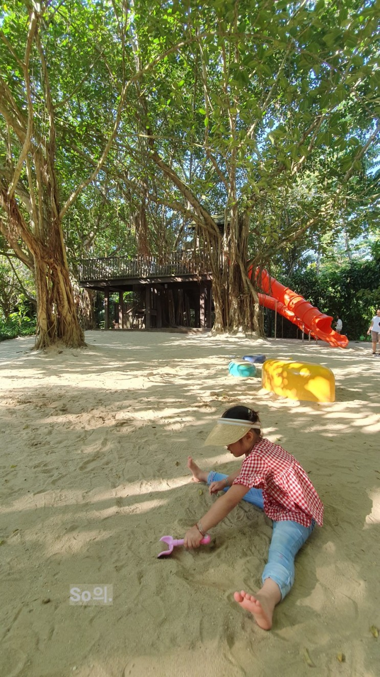 [아이와 함께하는 여행:싱가폴] 가든스 바이 더 베이 & 싱가포르 플라이어