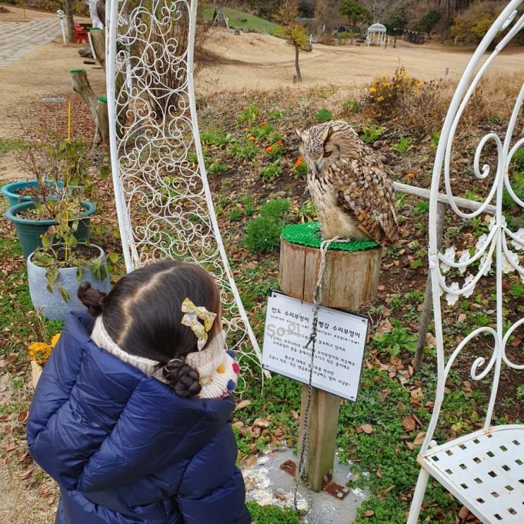 [아이와 함께하는 여행:제주도]화조원 & 조랑말체험공원