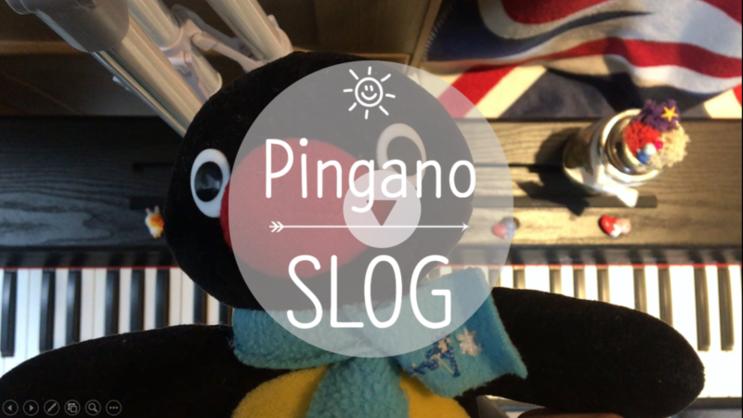 [Pingano_SLOG] 두근두근 피아노_스라밸(Study&Life Balance)_취미 피아노_뮤디스 디지털 피아노