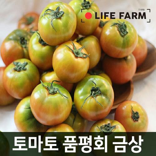 라이프팜 대저 짭짤이 토마토 2.5kg (3번~5번과), 단일상품 추천해요